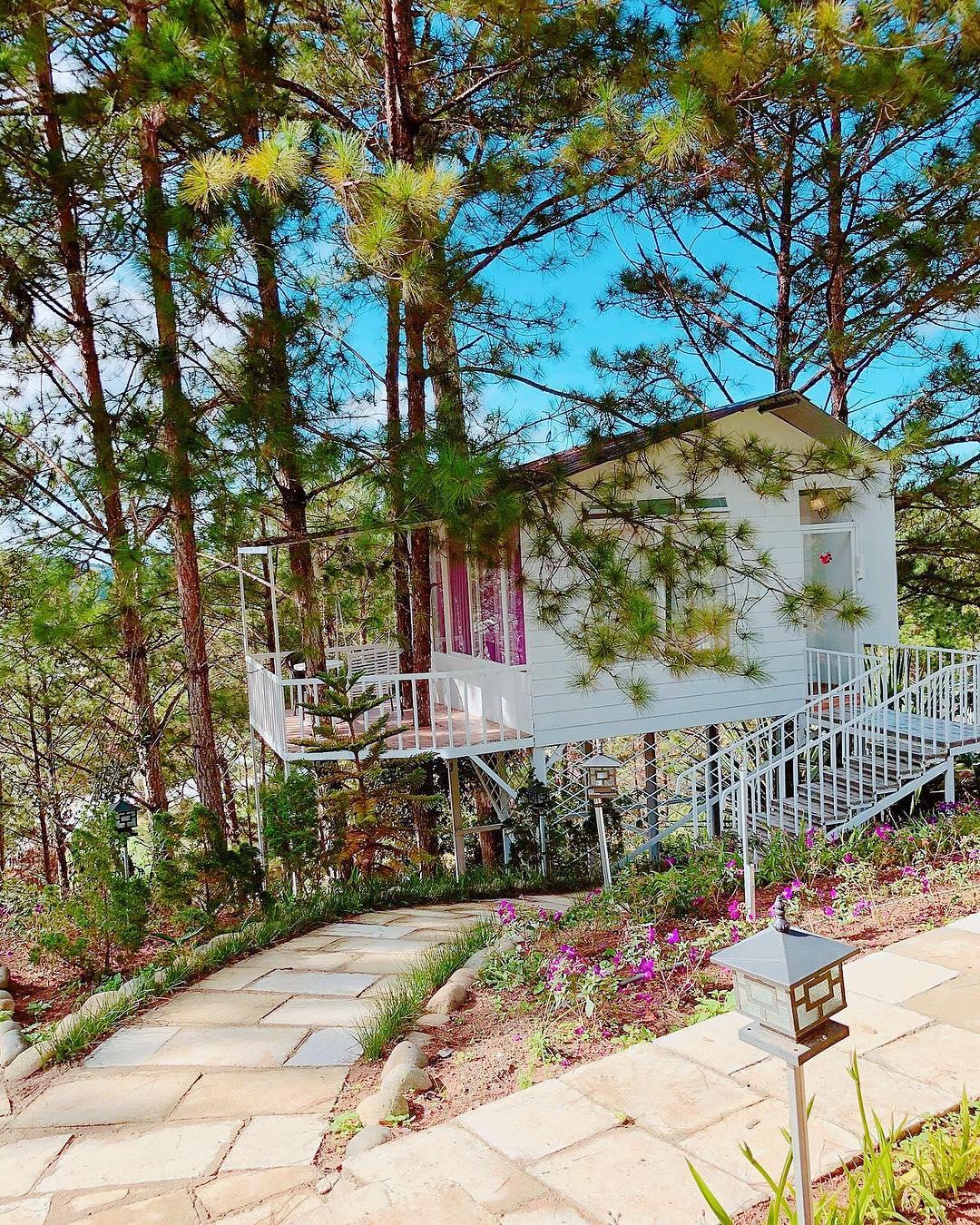 Pine Hill Homestay