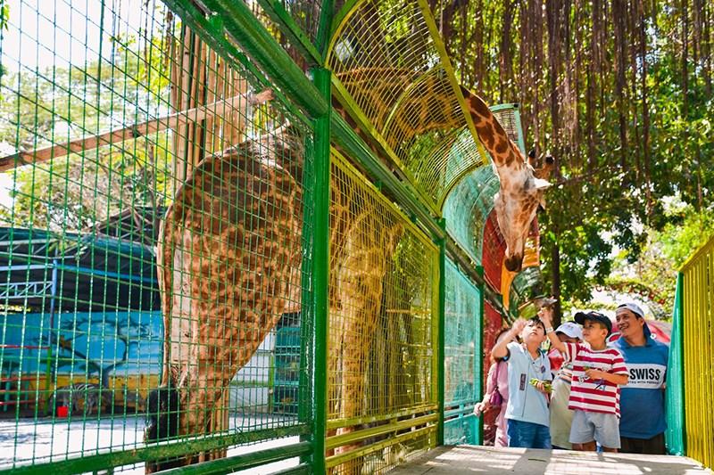 Tham quan vườn thú