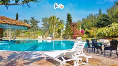 Photo of Paradise Beach Resort: thiên đường nghỉ dưỡng vạn người mê