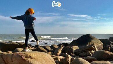 Photo of Kinh nghiệm vui chơi tại khu du lịch đèo nước ngọt Vũng Tàu