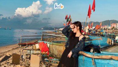 Photo of Kinh nghiệm du lịch biển Phước Hải dành cho hội yêu phượt