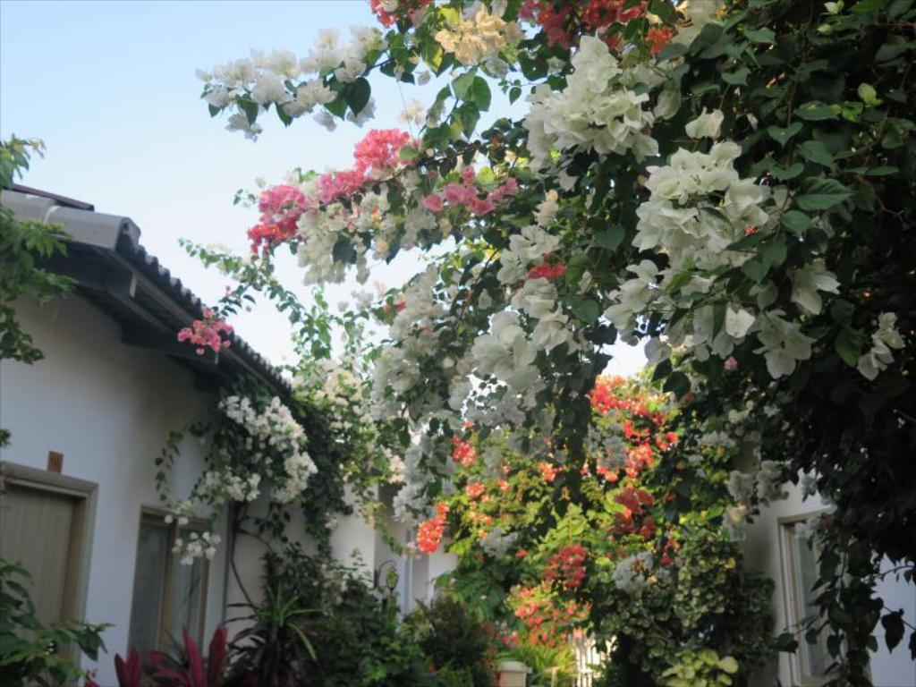 bungalow phu quoc ui