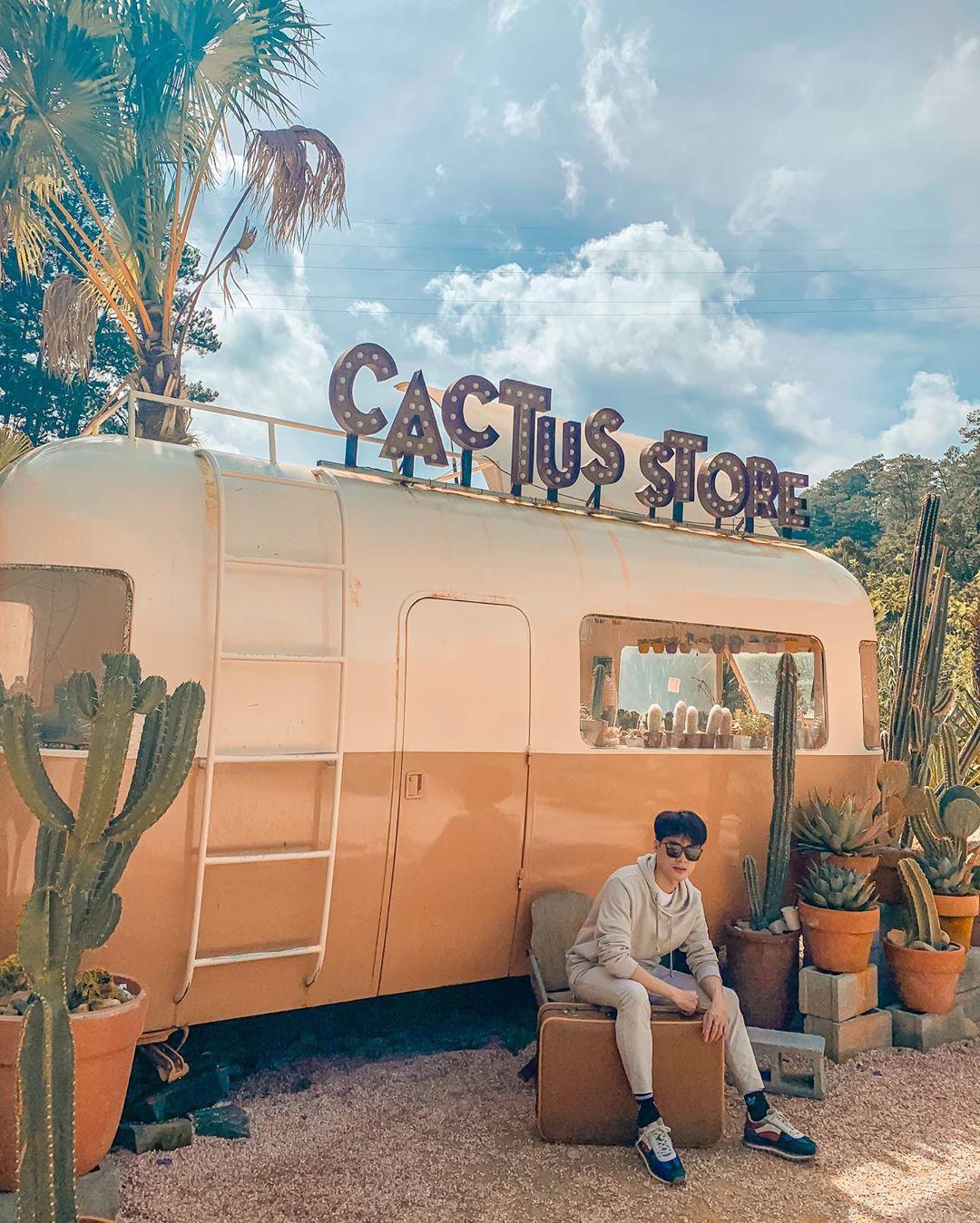 cactus store kombi land da lat