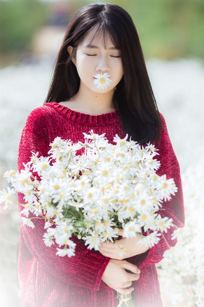 cuc hoa mi mac gi