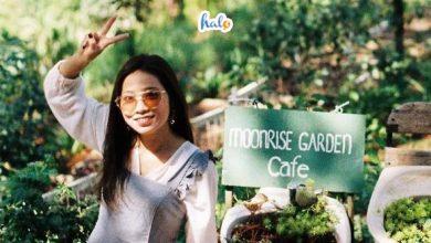 Photo of Review Moonrise Garden Đà Lạt – homestay thơ nhất thành phố ngàn hoa
