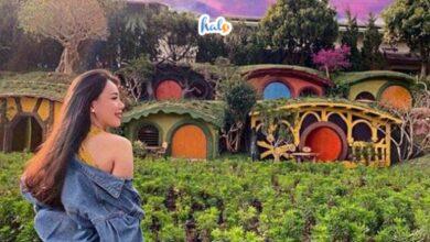 Photo of Kinh nghiệm đi Dalat Fairytale Land: giá vé, địa chỉ, có gì đẹp?
