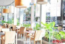 Photo of Phòng trà WE, thả hồn thật 'chill' vào từng bài hát