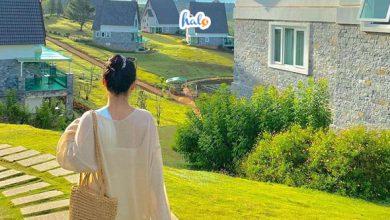 Photo of Mách bạn TOP 5 resort Hồ Tuyền Lâm Đà Lạt đẹp tựa trời Âu