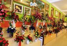 Photo of Vườn hoa khô Đà Lạt: Điểm checkin 'xịn xò' cho tín đồ sống ảo