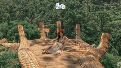 Photo of Review chi tiết khu du lịch Hoa Sơn Điền Trang 'hot rần rần' tại Đà Lạt