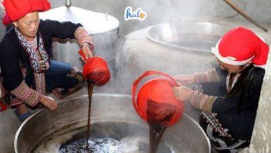 Photo of Tắm lá thuốc ở Sapa: phương thuốc chữa bệnh thần kì của người dân địa phương