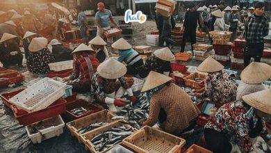 Photo of Ghé thăm chợ Bến Đá Vũng Tàu – 'xứ sở' của 1001 loại hải sản tươi ngon