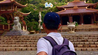 Đến chùa khỉ Vũng Tàu thăm đàn khỉ hoang dã lớn nhất Việt Nam