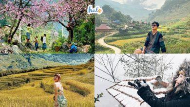 Photo of A-Z Du lịch Sapa mùa nào ĐẸP NHẤT? Gợi ý thời điểm lý tưởng đi Sapa