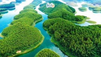 Photo of Hướng dẫn kinh nghiệm vui chơi tại Hồ Thác Bà Yên Bái