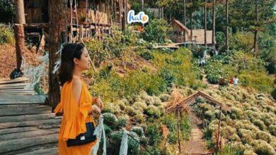 Photo of Phát hiện khu du lịch Đá Tiên Đà Lạt cực chill, check in miễn phí
