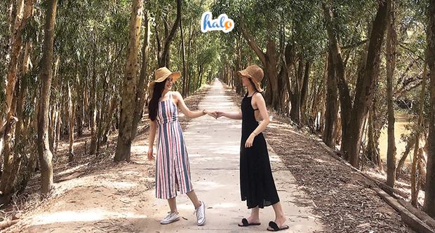Photo of Cẩm nang du lịch rừng Bằng Tạ chi tiết hội cuồng chân nhất định nên biết