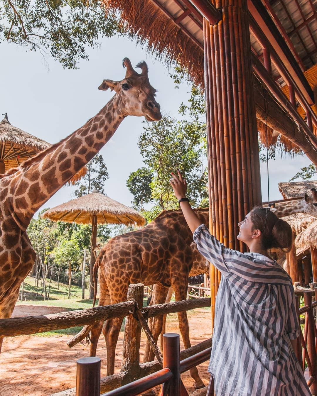 safari phu quoc anna_chernigova_