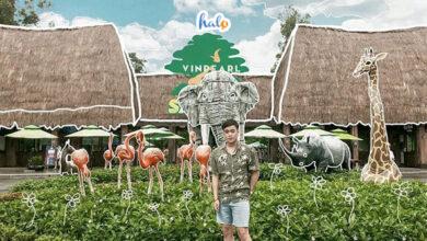 safari phu quoc cover