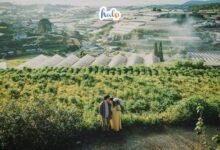 Photo of Điểm danh 6 nông trại Đà Lạt không thể không mê