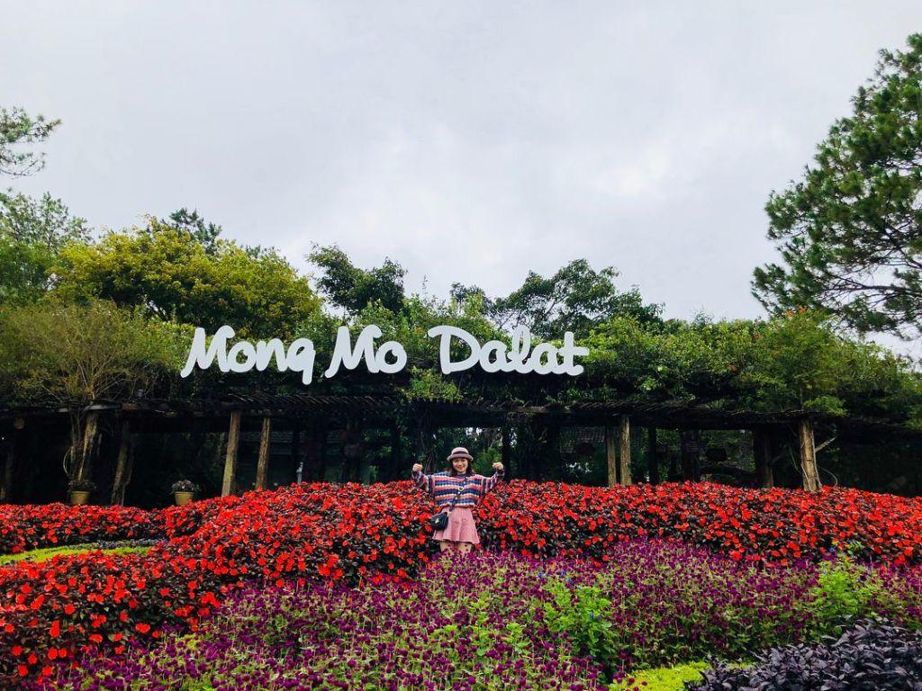 canh doi mong mo