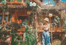 Photo of Ghé Củi Homestay Đà Lạt như lạc vào chốn bình yên nơi phố núi