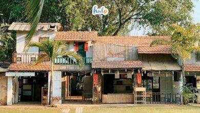 Photo of Khám phá khu du lịch Văn Thánh: chốn thôn quê giữa lòng Sài Gòn