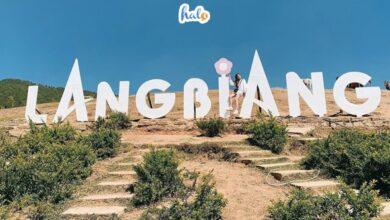 Photo of Kinh nghiệm đi núi Langbiang Đà Lạt: ở đâu, ăn gì, có gì đẹp?