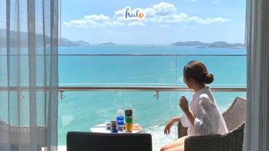 Photo of Top 7 khách sạn Nha Trang đường Trần Phú giá rẻ, phòng đẹp