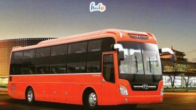 Photo of CẬP NHẬT 10 hãng xe khách đi Ninh Bình giá rẻ, chất lượng tốt
