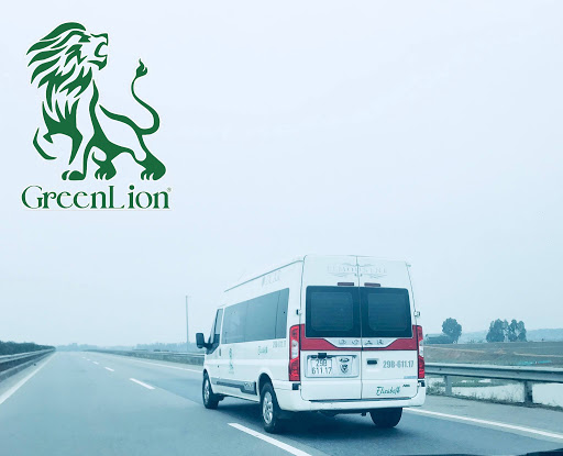 green lion bus travel