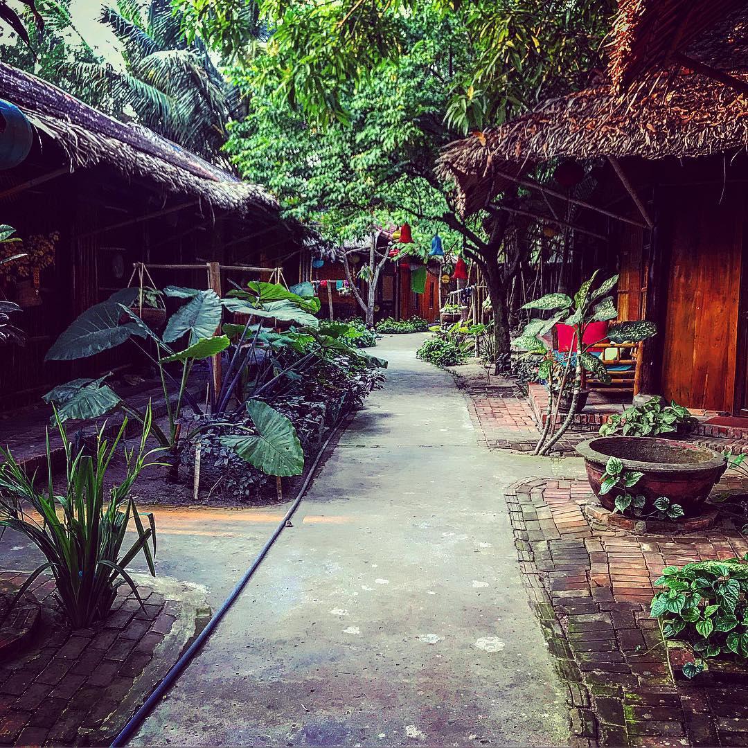 under the coconut tree homestay