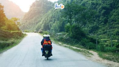 Thuê xe máy Đồng Hới Quảng Bình