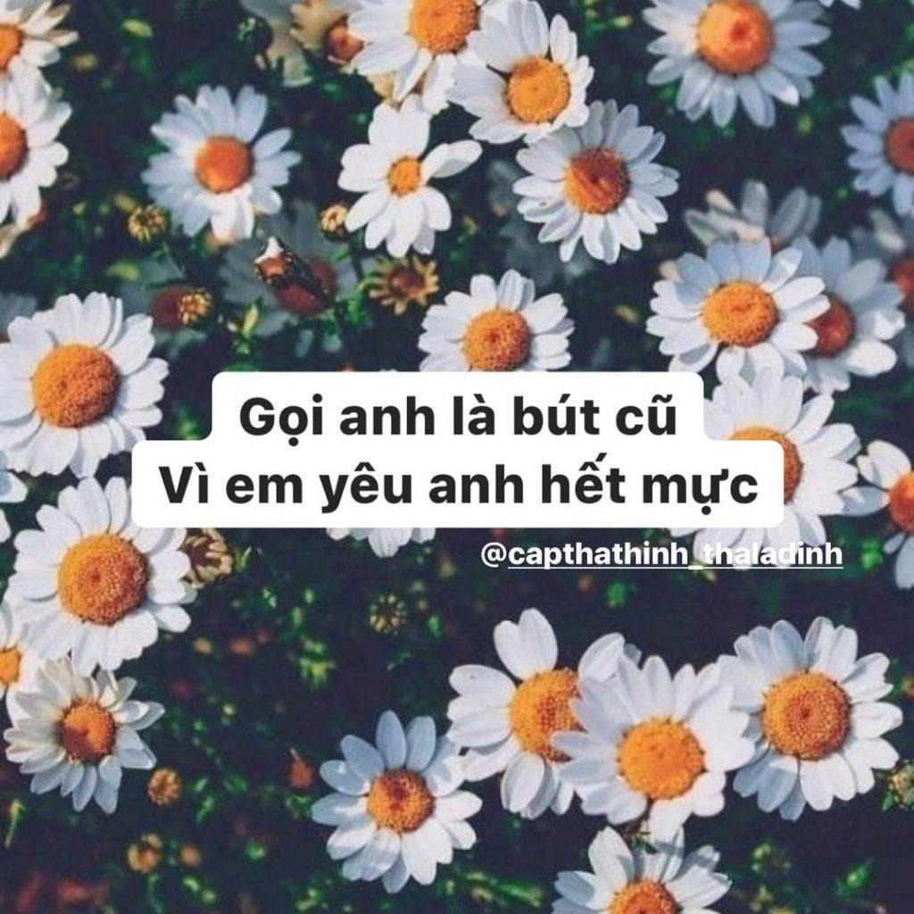 capthathinh_thaladinh_