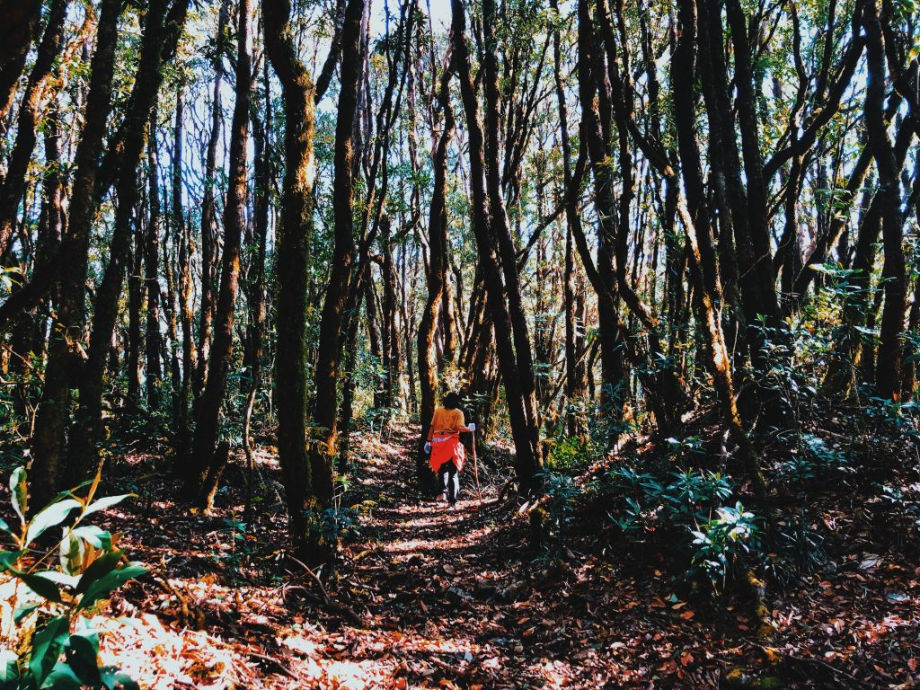 địa điểm trekking hot 10