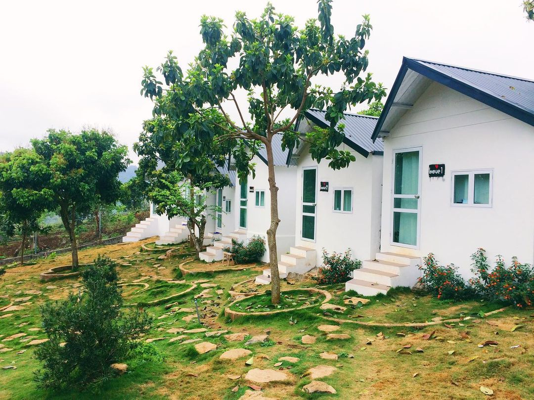 nha love doi house