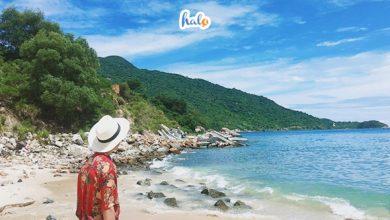 Tour Đà Nẵng Cù Lao Chàm cho một chuyến du lịch đáng nhớ