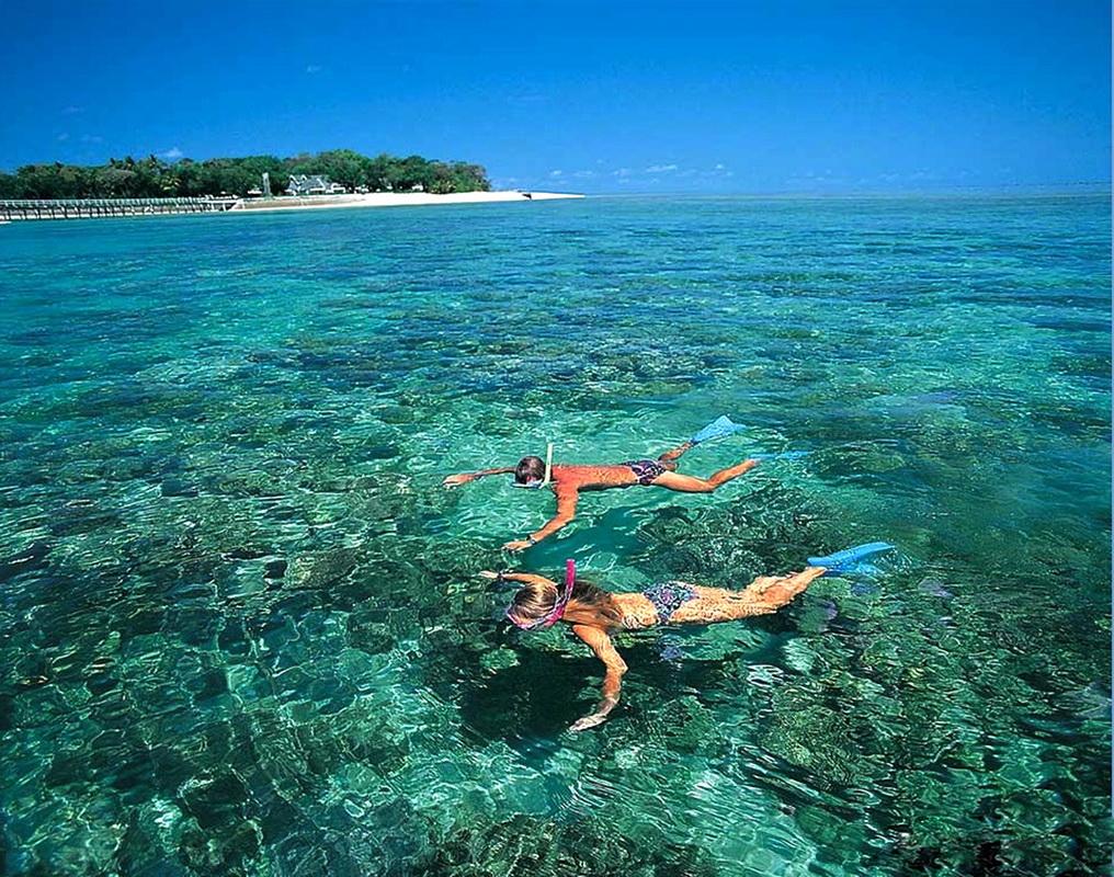 Lặn ngắm san hô ở Cù Lao Xanh trong tour quy nhơn 4 ngày 3 đêm