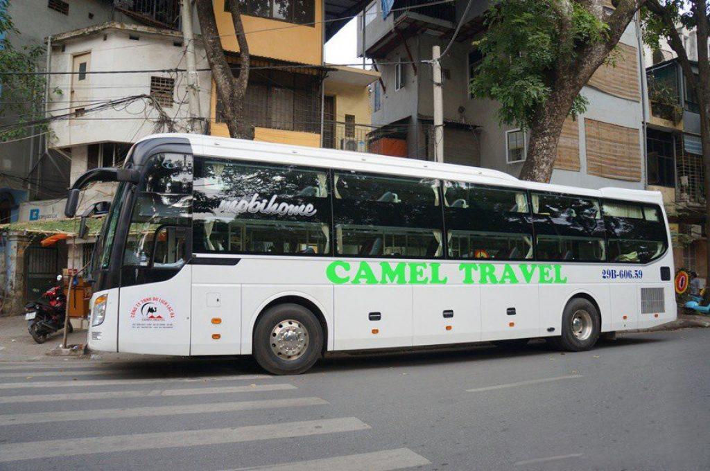 nhà xe TM Camel
