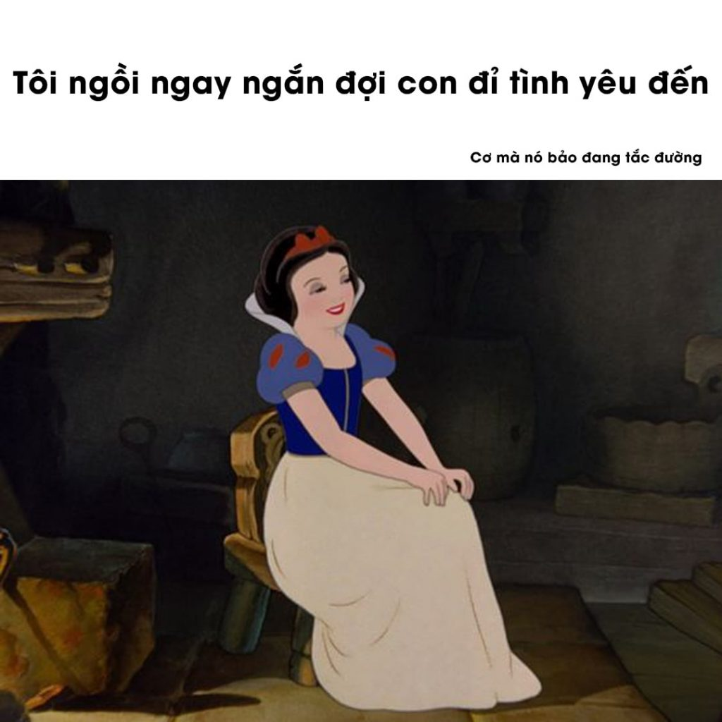 anh che tuyet bich