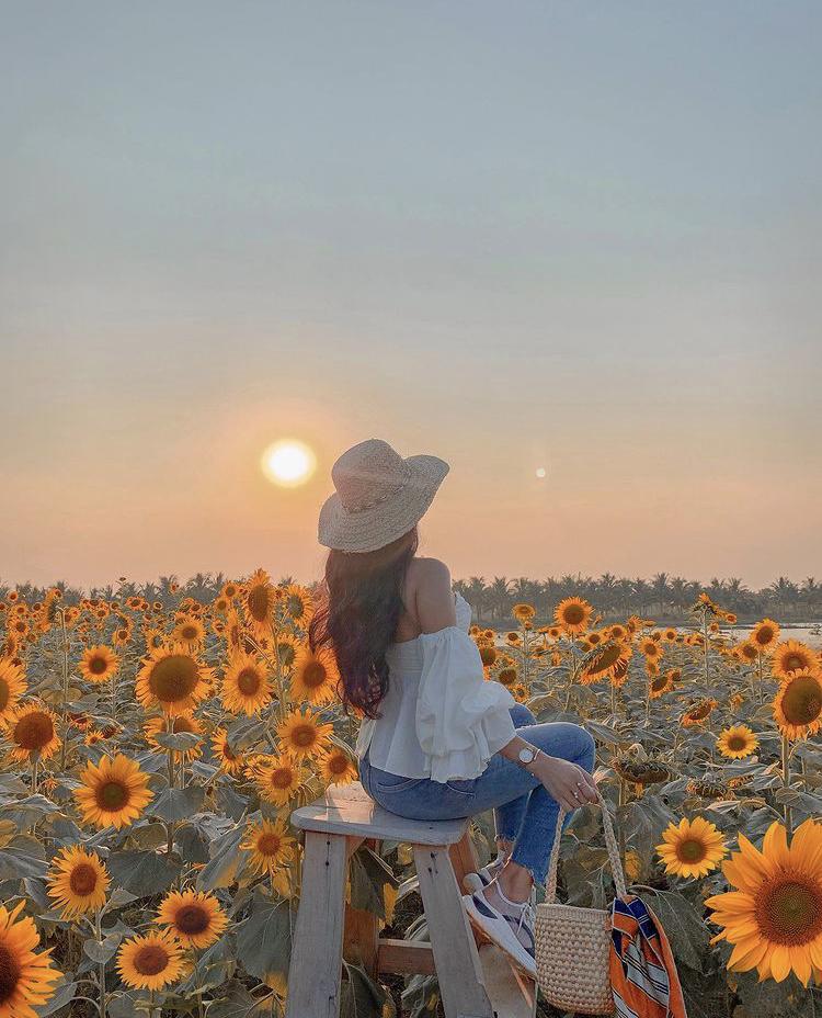 ngồi trên ghế cao chụp ảnh với hoa hướng dương