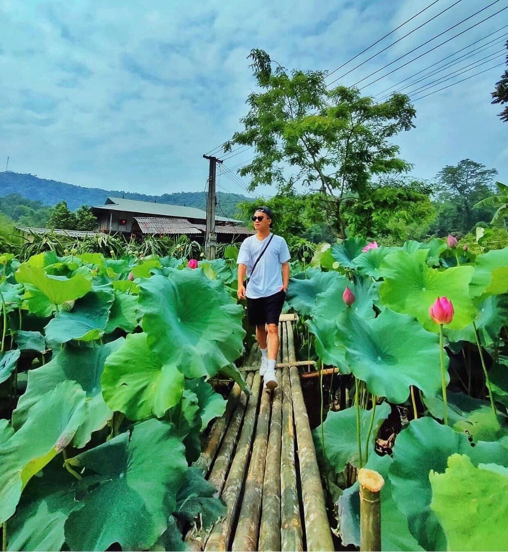 Vườn sen Minh Tâm