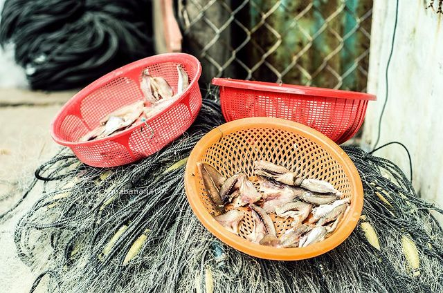 Thưởng thức hải sản tươi ngon