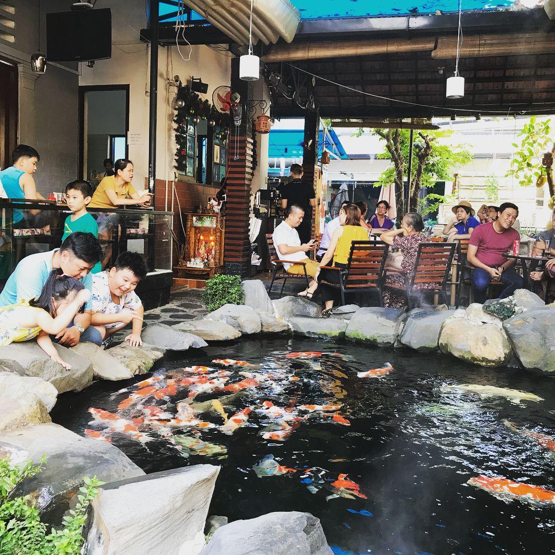 zen-koi-garden - cafe cá koi TPHCM