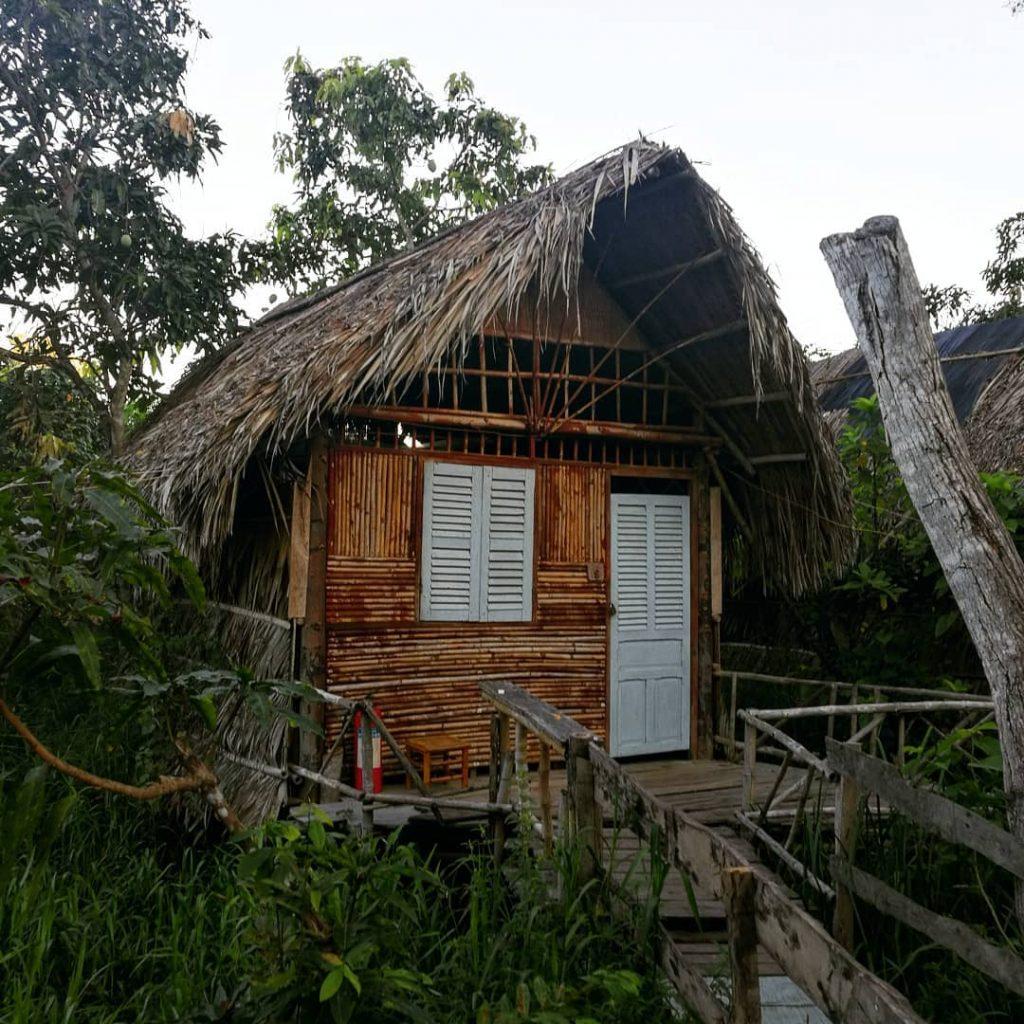 Ivory Bamboo
