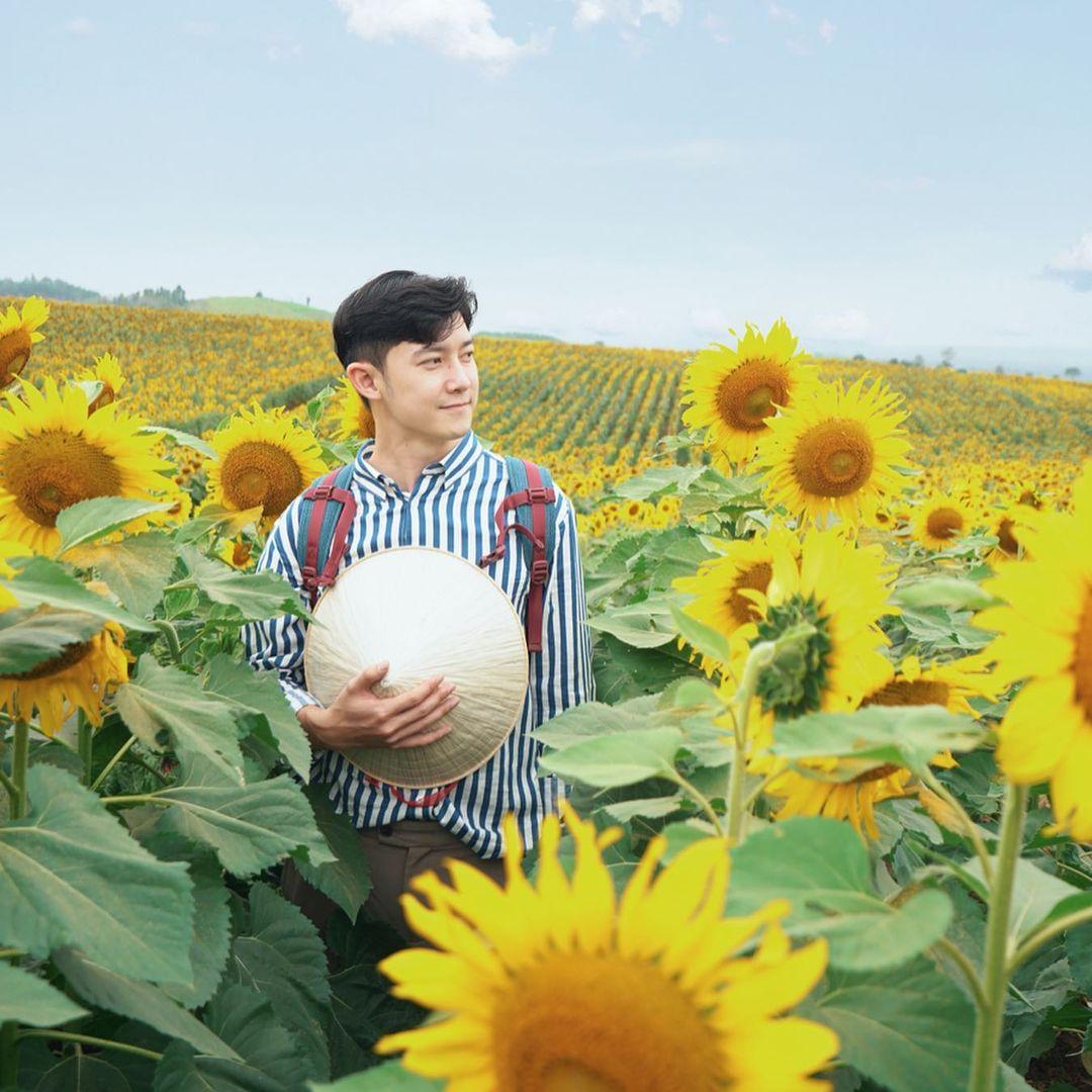 Đồi hoa hướng dương Nghĩa Đàn - địa điểm du lịch Nghệ An