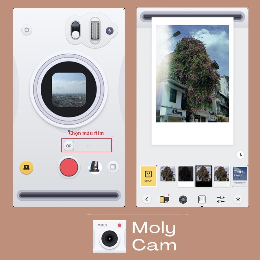 moly-cam