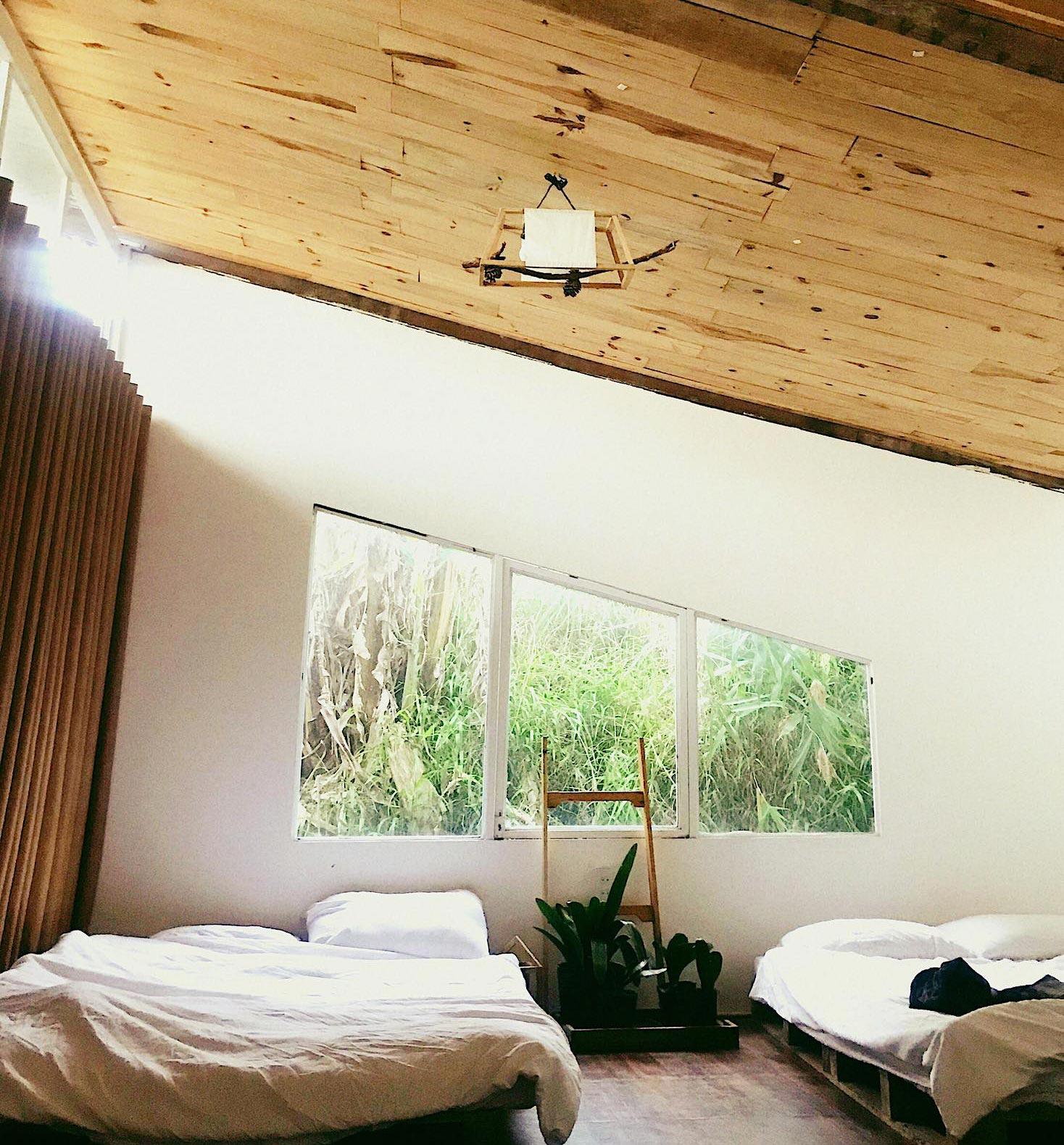 phong-dorm ở The Wilder Nest