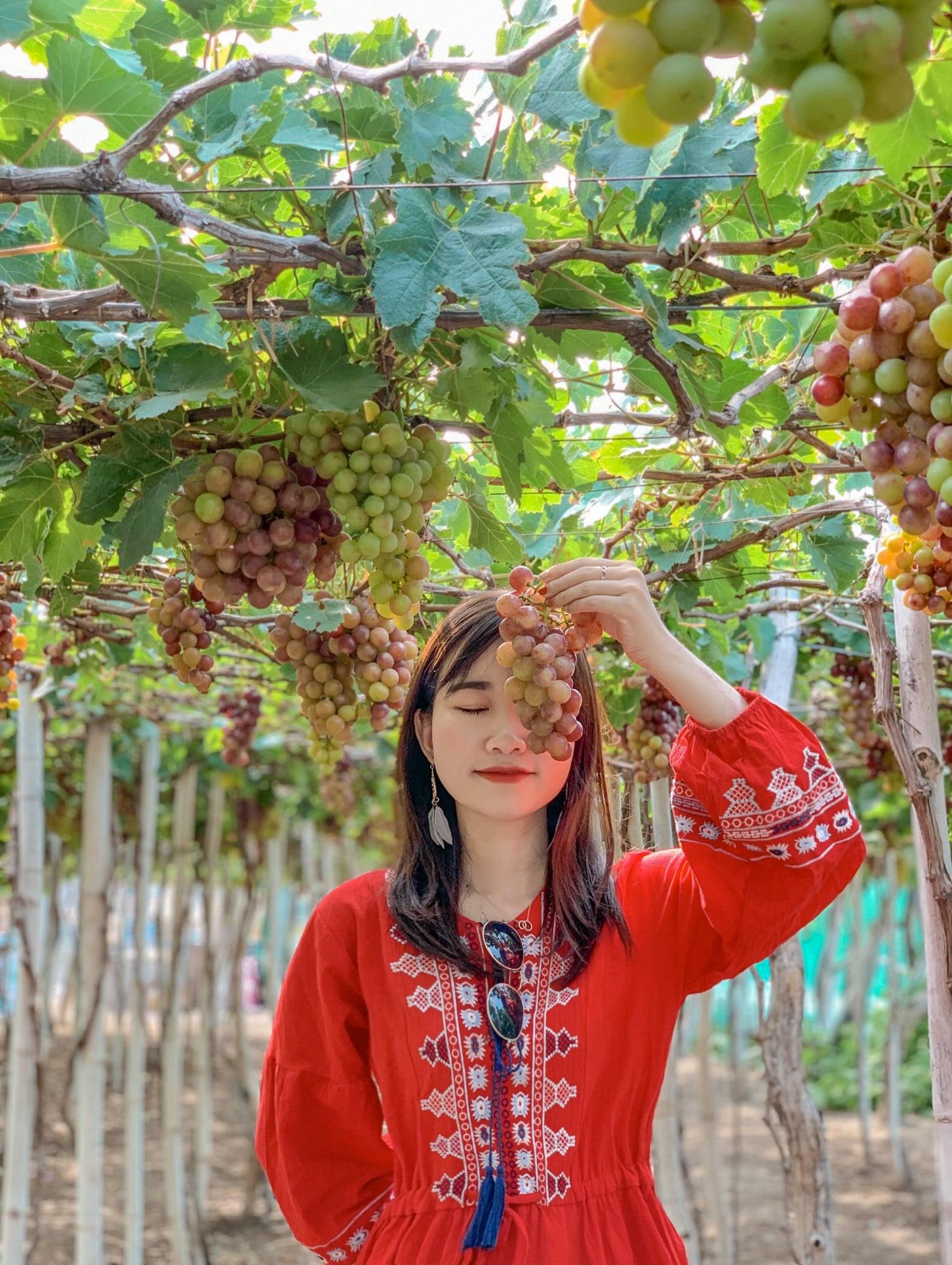 Phan Thiết - Phan Rang 4N3Đ